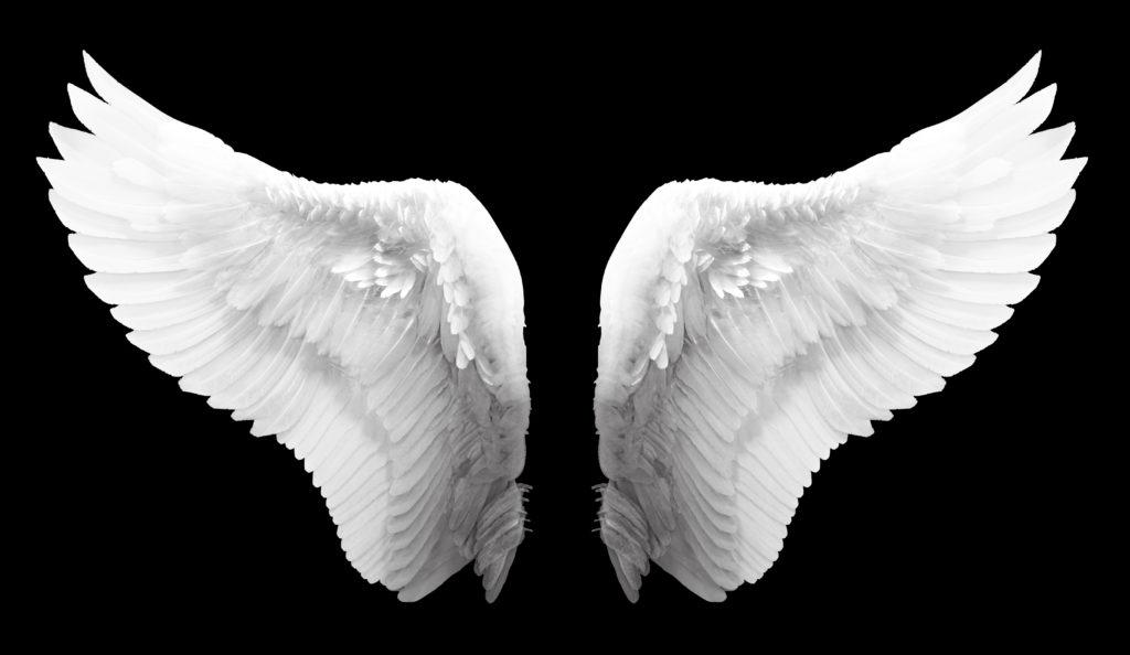 AngelBat